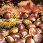 CHÂTAIGNE : LE fruit d'octobre